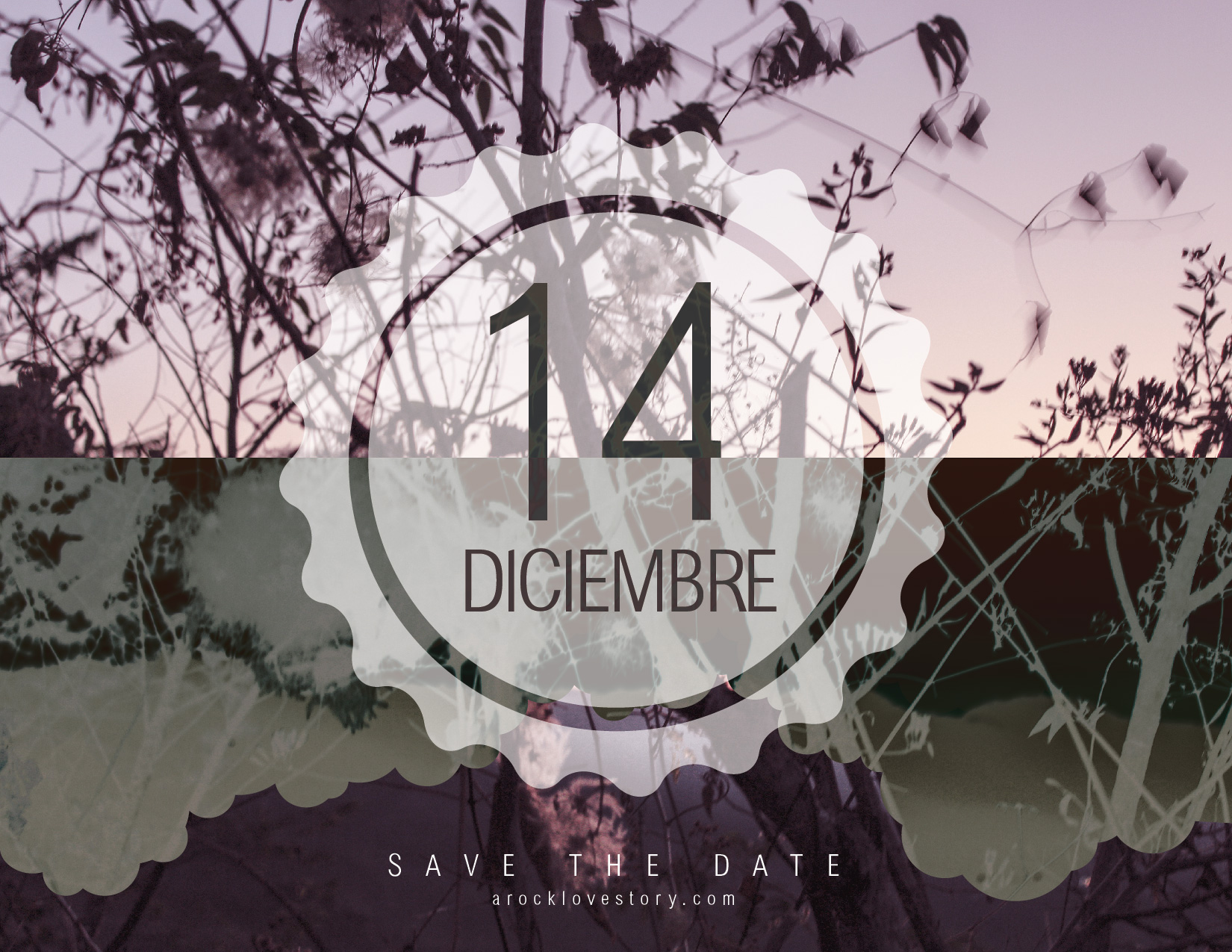 14 de diciembre: